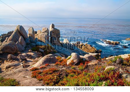 View to coast at Big Sur California USA Monterey