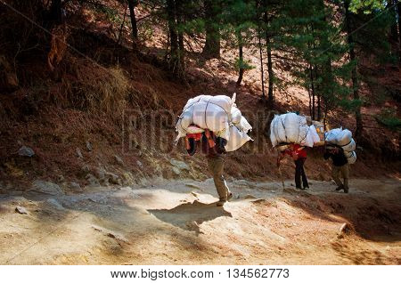 Sagarmatha National Park Nepal -Circa March 2014: Porters carry heavy load in the Himalaya in Sagarmatha National Park Nepal