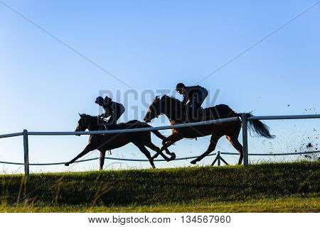 Race horses riders  training track action morning silhouetted landscape.