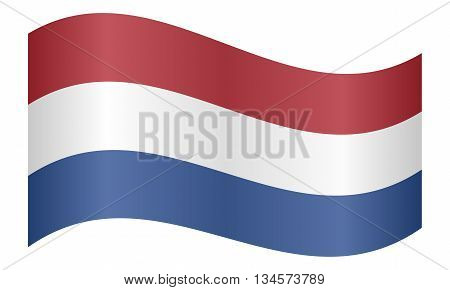 Flag of the Netherlands waving on white background