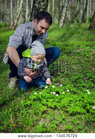 Father and son having fun in the spring park collecting flowers. Father's day. Toddler and father have fun outside. Father's Day. Happy Fathers Day. Happy family. Father and baby.