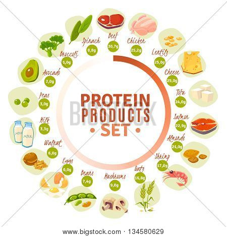 High protein products progressive circle diagram with actual content data from spinach to beef flat vector illustration