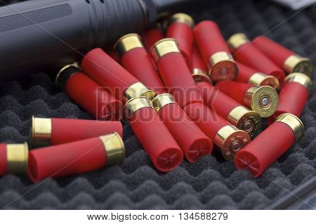12 gauge shotgun shells with shotgun on surface