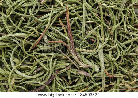 Organic rosemary (Rosmarinus officinalis) leaves. Macro close up background texture. Top view.