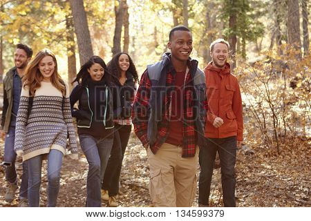 Group of six friends hiking together through a forest