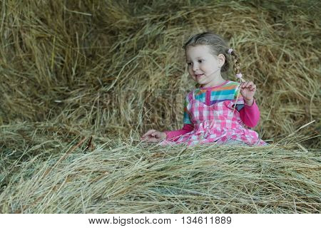 Happy preschooler girl is wearing striped and plaid playing in country farm hayloft among dried loose grass hay