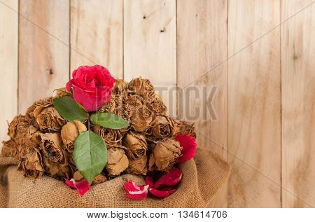 Love abstract concept ties Vintage red roses and dried. Classic wooden floor copy space