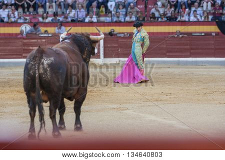 Jaen SPAIN - 15 october 2011: Bullfighter Alberto Lamelas waiting for the bull to start fight Jaen Spain