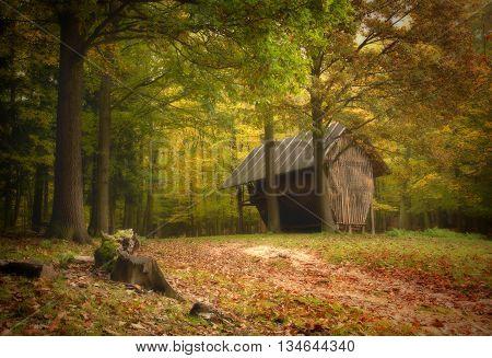 Hayloft in autumn forest.In the foreground stump.