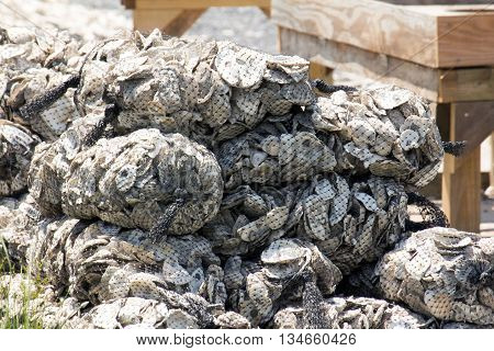 Bags upon bags of oyster shells piled upon each other.