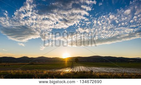 Landscape Of Cultivated Fields And Farms With Mountain Range In The Background. Irrigation System Fo