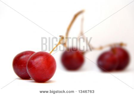 red grapes on an isolated white
