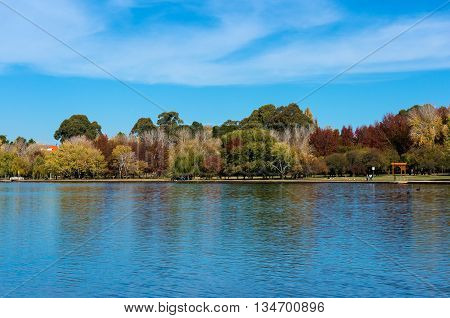 Lake Burley Griffin with Bowen park in fall colours on the background. Autumn trees on sunny day with water on the foreground. Canberra Australia