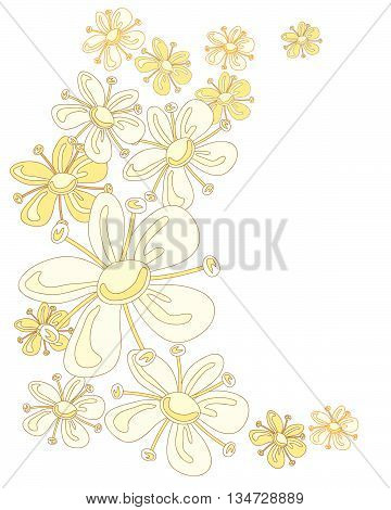 an illustration of abstract elderflowers in a curved design on white background