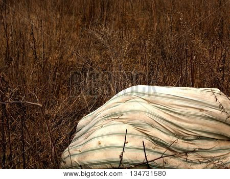 Old Dirty Matress In Dry Grass