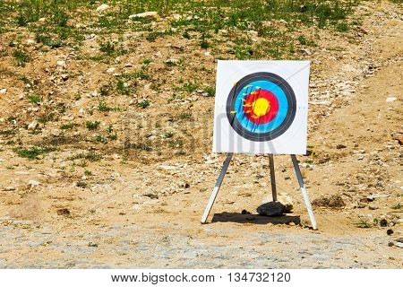 Outdoor target with yellow bolts fired from a crossbow on a rural shooting range