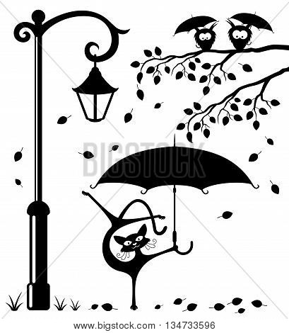 Funny cat with an umbrella in the park under a streetlight and owls on a branch.
