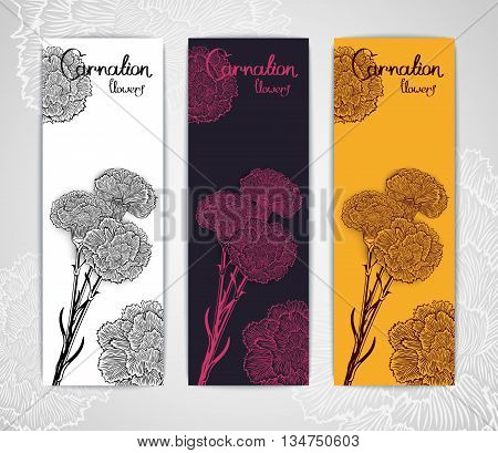 Three banner template with bouquet of carnations in engraving style. Vector illustration. Stylized design for flyer banner and other decoration