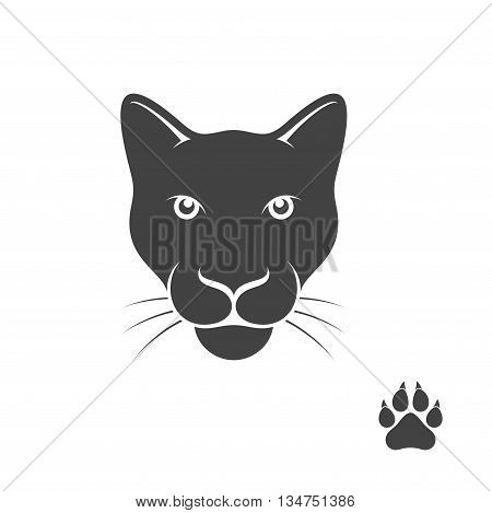 Abstract panther with paw print (EPS 10)