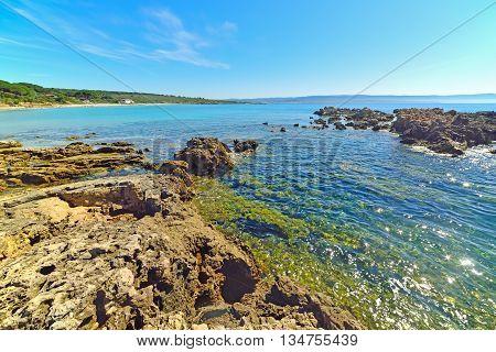 yellow rocks in Le Bombarde beach Italy