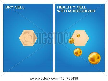 moisturizer make dry skin to healthy skin vector , 2 steps