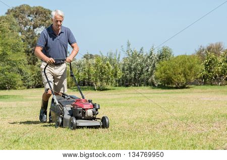 Senior gardener mowing his green lawn in garden. Man working in garden cutting grass with lawn mower. Retired mature man in shorts mowing grass with an electric mower in garden.