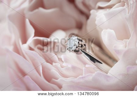 Diamond ring in a pink rose - engagement ring close up