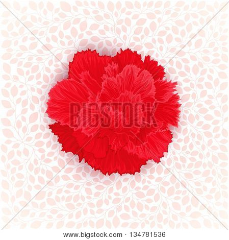 Red burgeon blossom of carnation on leaves texture. Vector design element