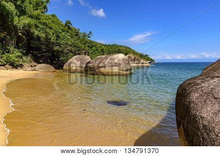 Meeting between the vegetation and the sea with its warm clear waters of the beach Itaguaçu Ilha Grande Angra dos Reis