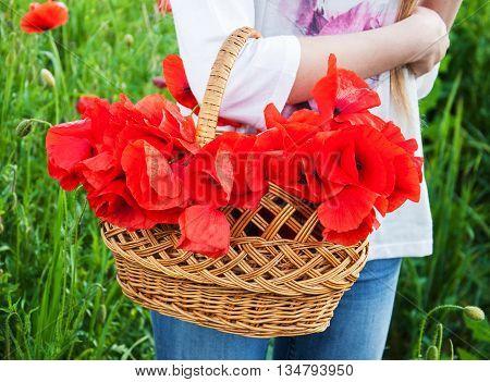 Basket With Poppy Flowers
