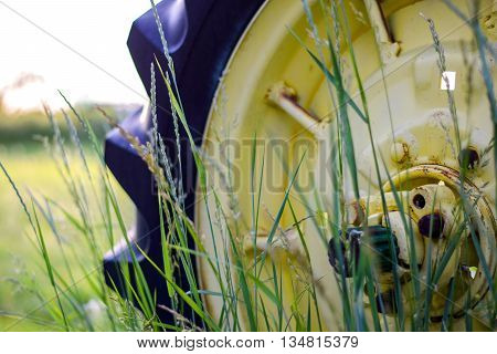 Old Tractor Wheel Behind Blades Of Grass