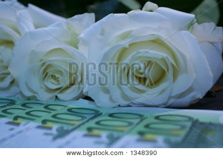 Roses With Euros
