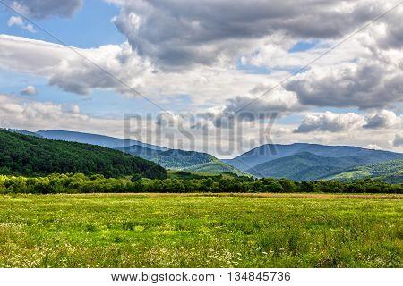 Rural Field Near Forest On Hillside