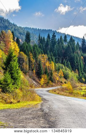 Empty asphalt road the coniferous forest in mountains