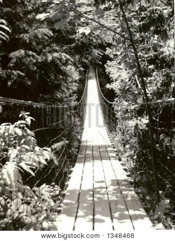 Bridge Bw Fall Creek Edited