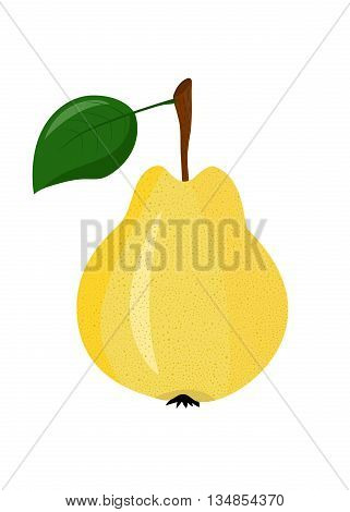 Yellow pear with a sprig on white background