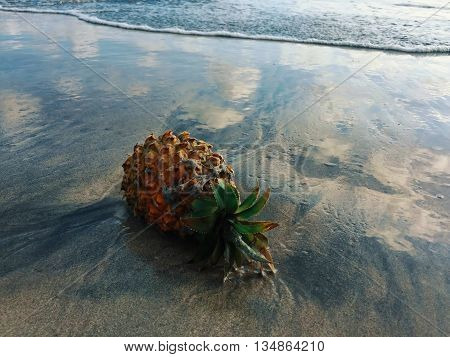 Pineapple on the beach during low tide, pineapple on sandy beach