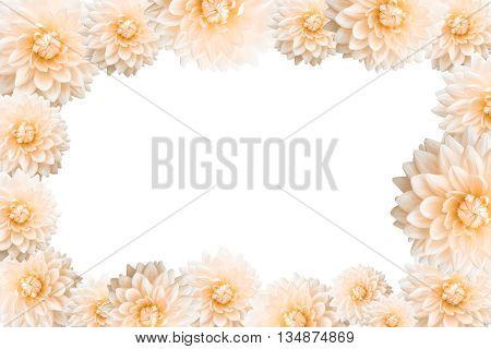 The frame of flower border on white background