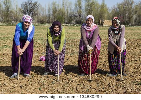 KONYA, TURKEY - APRIL 5, 2016: Women in traditional, colorful dresses work in the field.