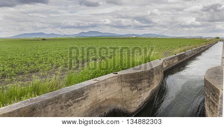Huge irrigation canal flows over the fertile meadows of High Guadiana or Vegas Altas Extremadura Spain. Panoramic shot poster