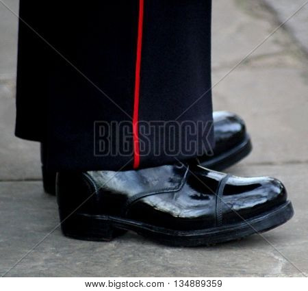 Abstract View of a Guardsman on Sentry Duty in London england
