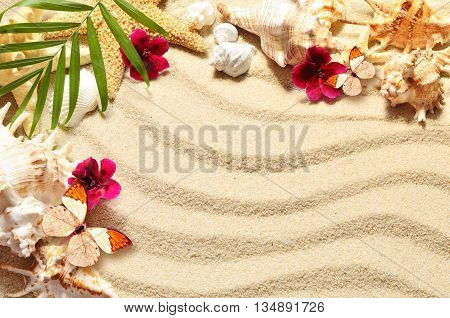 A lot of seashells starfish flowers and butterfly on sand. Exotic concept. Summer beach.