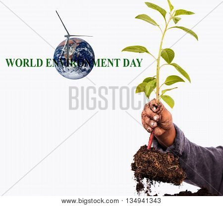 Concept World Environment dayhand little boy hold plane tree Global credit NASA