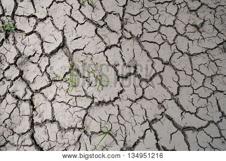parched ground on a field in summer