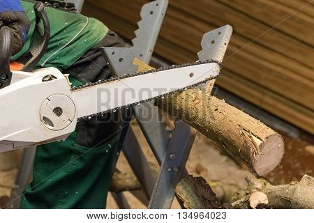 sawing up timber logs with a chainsaw for firewood