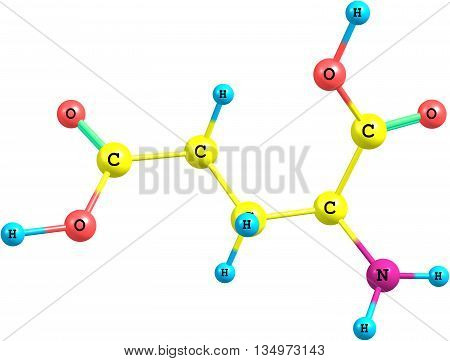 A model of Glutamic Acid an amino acid. It has an important function in cell metabolism and neurotransmission. 3d illustration