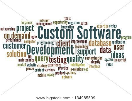Custom Software Development, Word Cloud Concept 2