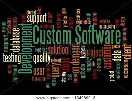 Custom Software Development, Word Cloud Concept 4