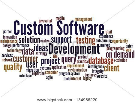 Custom Software Development, Word Cloud Concept 8