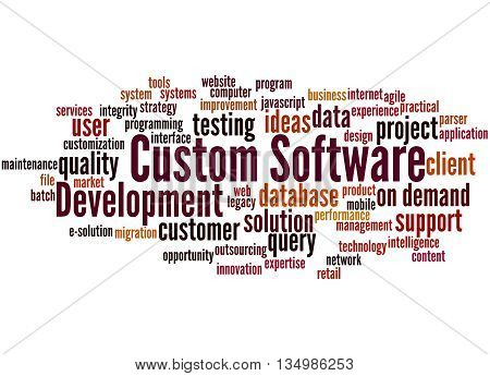 Custom Software Development, Word Cloud Concept 9
